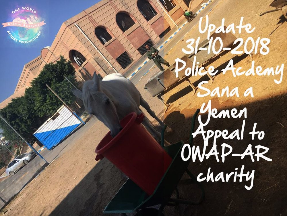 police ac horse drinking nada pic with text 31 OCT 2018 for OWAP-AR visit today.jpg