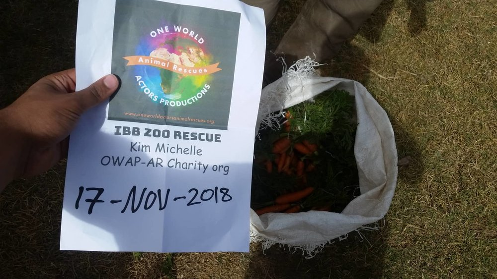 ibb 17 nov 2018 carrots delivery by Hisham for OWAP AR with our sign yemen zoo rescue.jpg