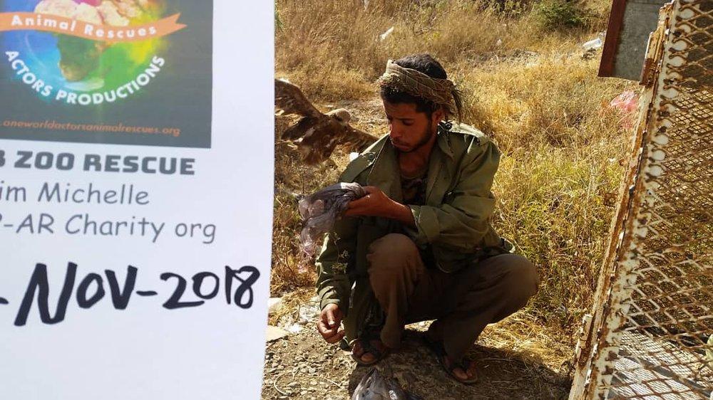 ibb zoo rescue 10 NOV 2018 Abdul razak feeding one of our eagles 10 nov 2018 OWAPAR providing with sign Hisham pic.jpg