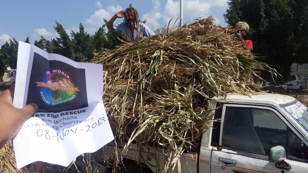 ibb zoo rescue salute from the worker supplier deliverer fodder 8 NOV 2018 sign hisham pic.jpg