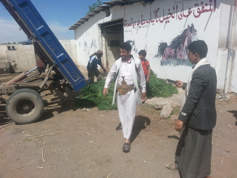dhamar q'rab 16 NOV 2018 by OWAP AR helall pics fodder delivery.jpg