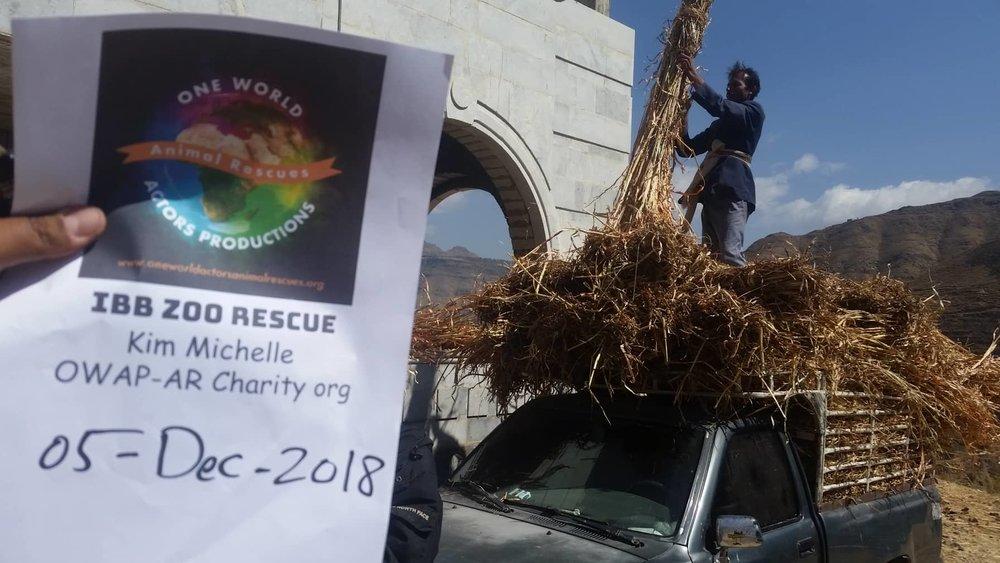Ibb Zoo 5 DEC 2018 delivery corn sticks zabedi  Hisham pic for OWAP AR with our sign OWAPAR providing.jpg