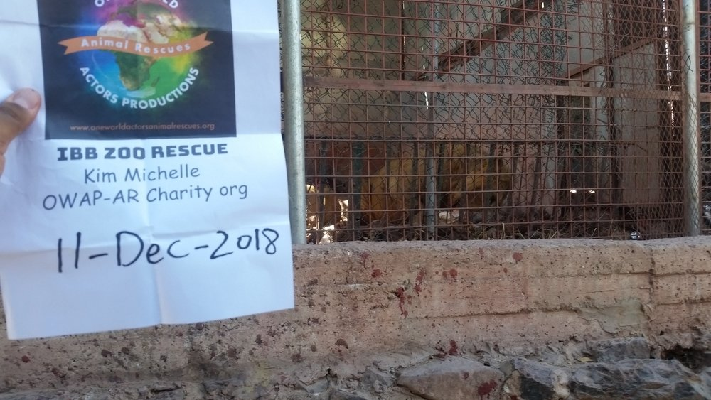 ibb zoo dec 11 DEC 2018 by OWAP AR our lions with our meal hisham pic with sign.jpg