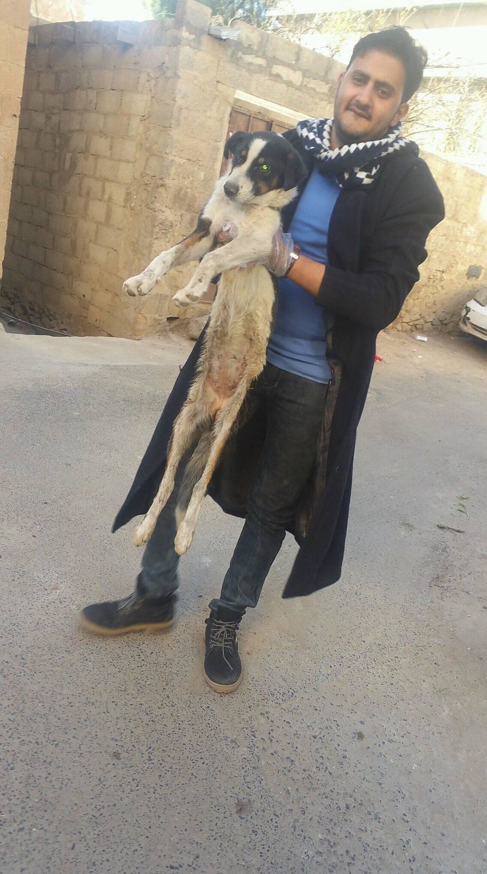 LUCY with Mohamed Qaten 26 DEC 2018 OWAP AR stray rescue mission sana'a yemen.jpg