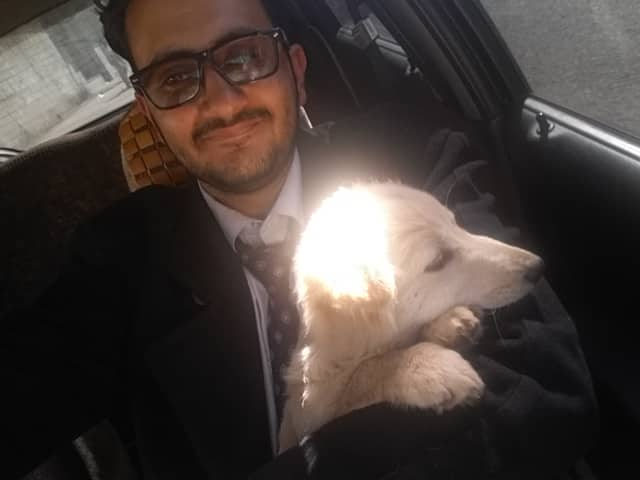 stray Moh rescues SOPHIE - again 30 DEC 2018 Sana'a yemen rescue by OWAP -AR.jpg