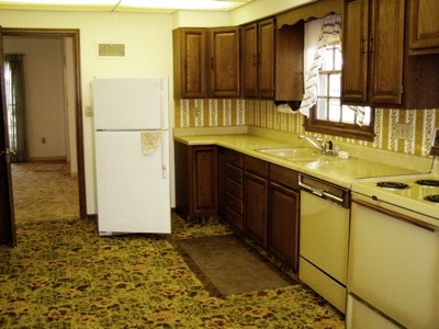 Imagine something like this only with a harvest gold fridge, even cheaper cabinets, and abundant ugly wallpaper....