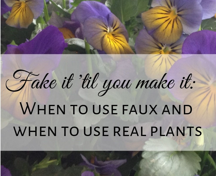 when to use faux and when to use real plants by JRL Interiors 01720