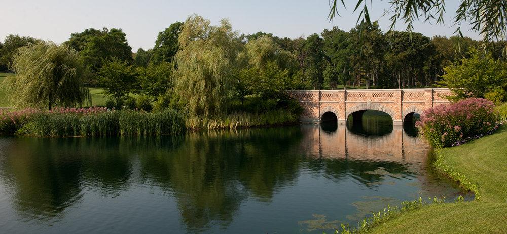 0309 bridge.jpg