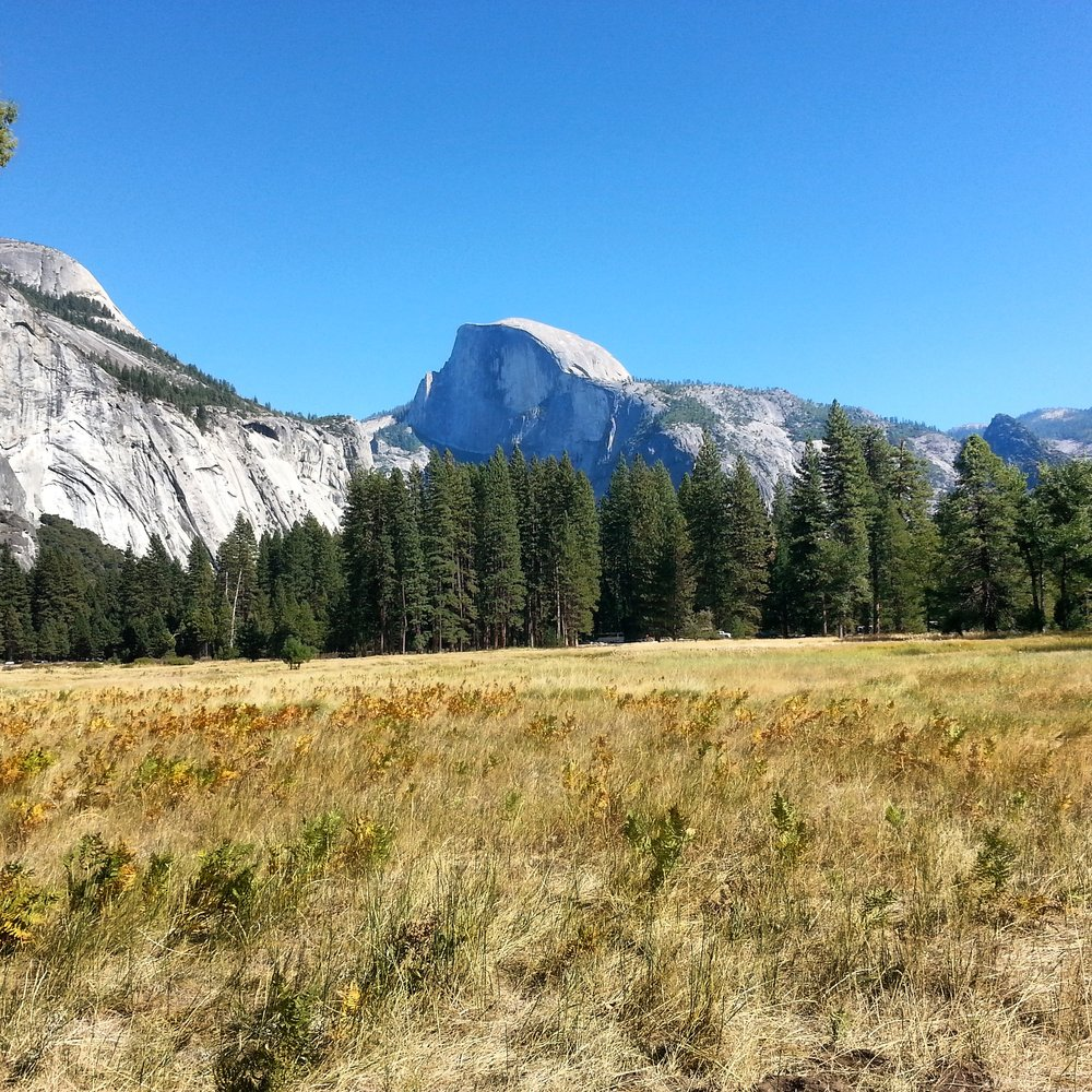 Half Dome from Yosemite Valley.