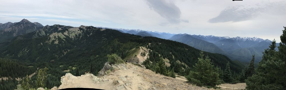 The view from Hurricane Hill in  Olympic National Park.