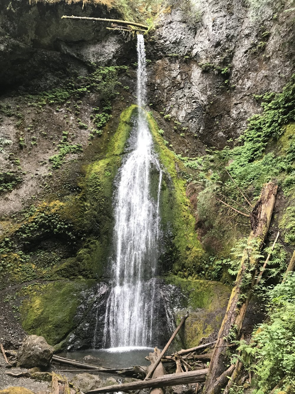 Marymere Falls...a wonderful quick hike to an amazing waterfall!