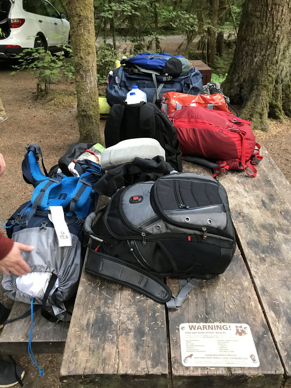 We camped overnight at the  Ohanapecosh Campground  inside of Rainier. Apparently the tent was buried in the back of the car and we had to unload and repack the gear for our next few tent camping evenings!