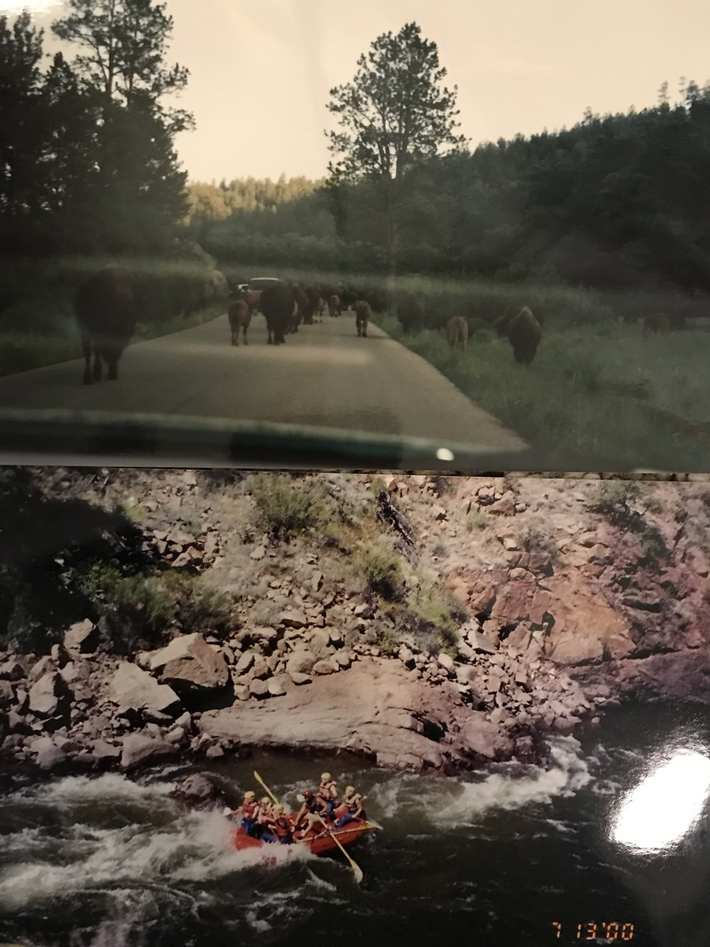 Some pics from Mike R's road trips growing up as a kid! Top pic in  Yellowstone National Park  and bottom is WW Rafting in Colorado.