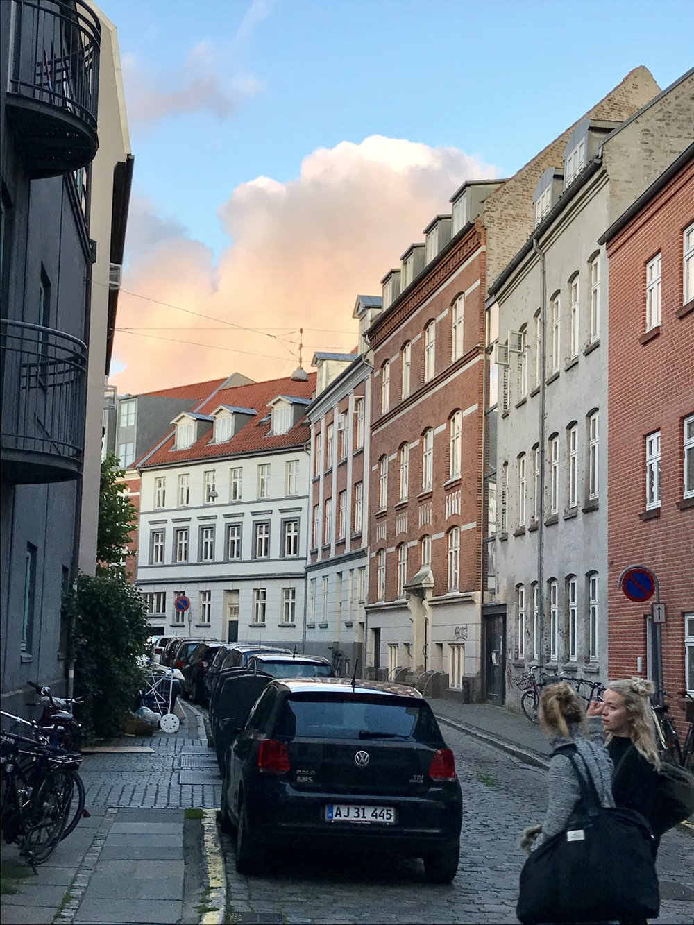We rounded out our Aarhus visit with a 45-minute bus ride to  Moesgaard Museum , a museum dedicated to archaeology and ethnography.