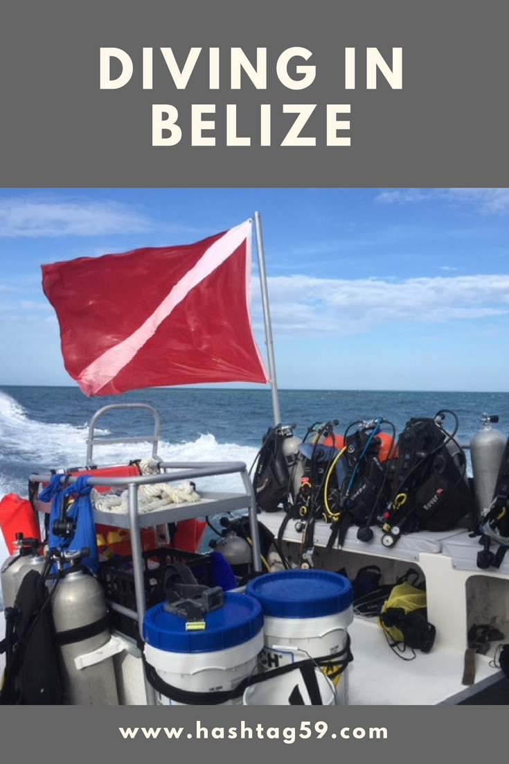 Diving In Belize.png