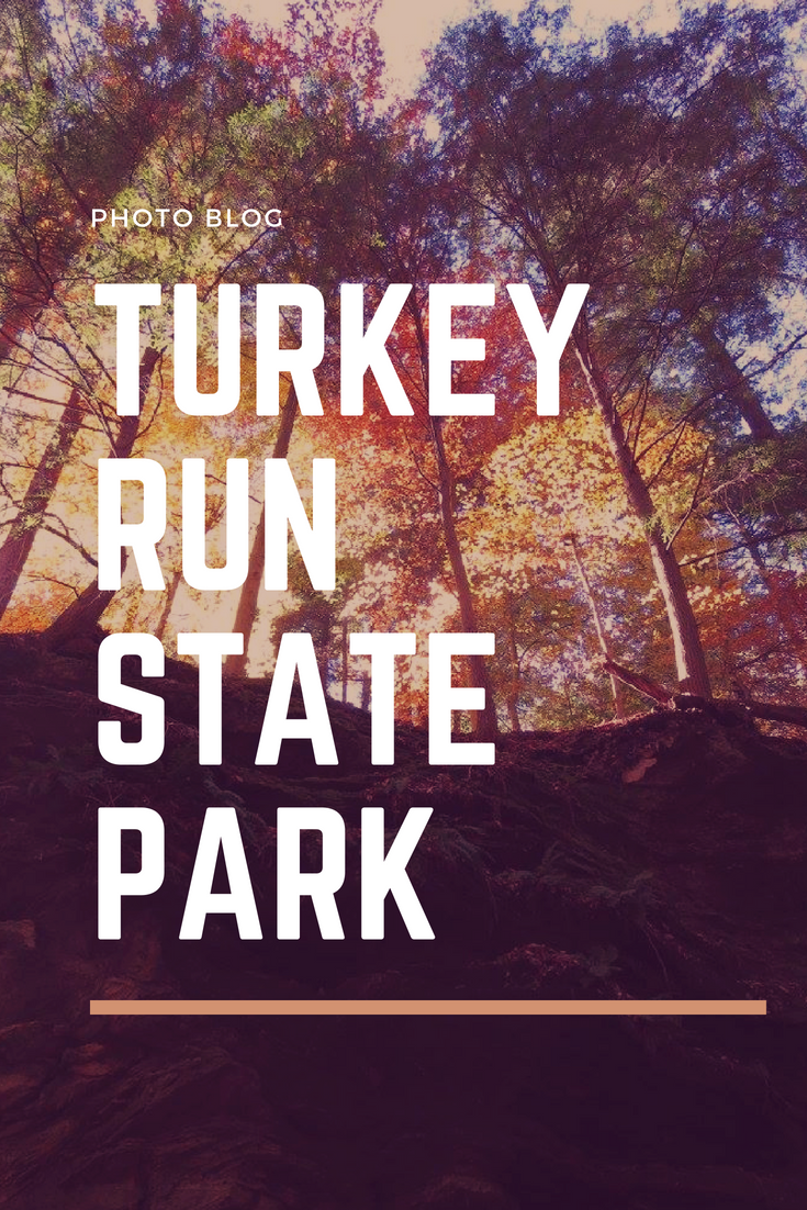 Turkey Run State Park.png