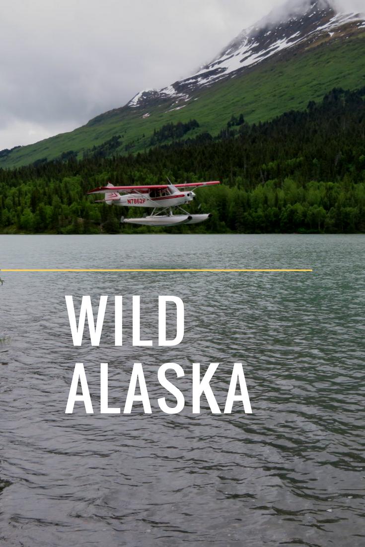 Wild Alaska.png