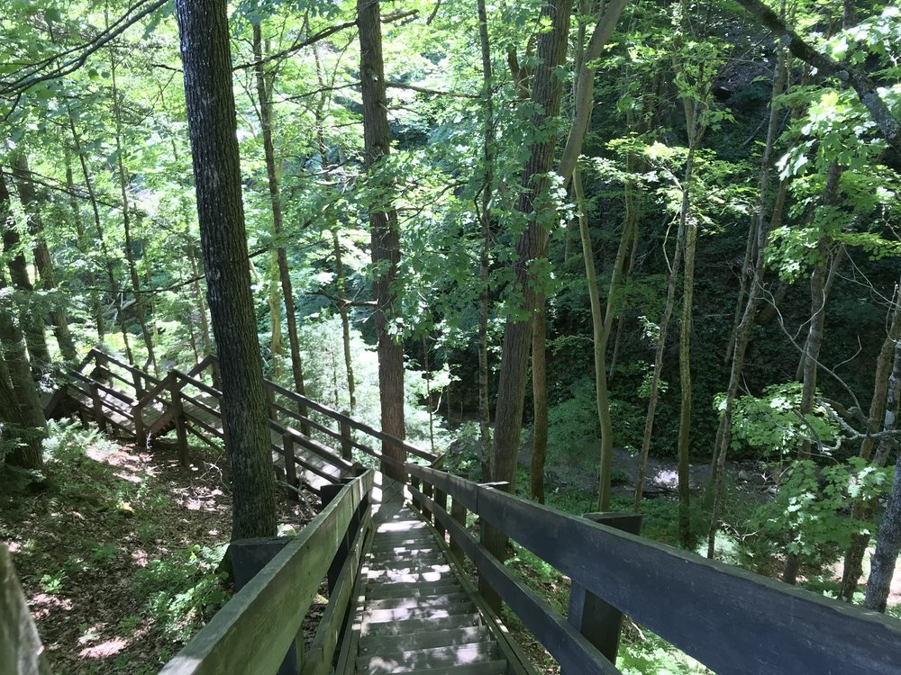 On Trail 2 at Shades, you go down the steps, then up a ravine—and yes, up some more steps.
