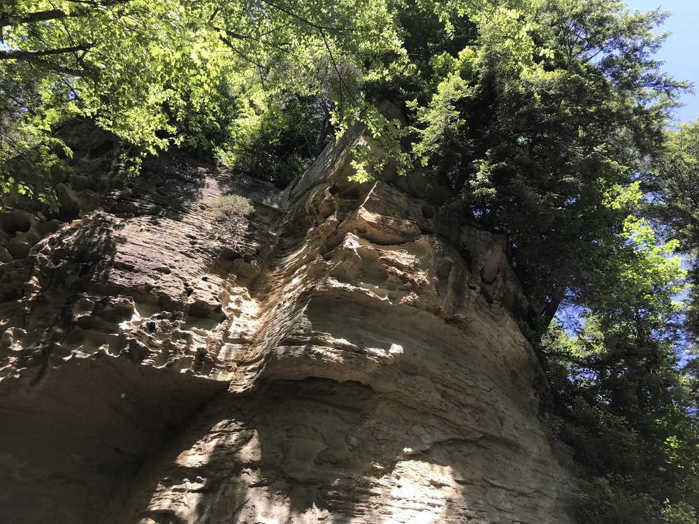 Looking up Honeycomb Rock at Pine Hills Nature Preserve. Below, Clifty and Indian creeks join together.