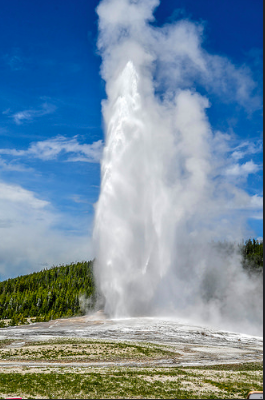 It's hard to visit Yellowstone without seeing Old Faithful and walking the boardwalk of the geysers, it must be witnessed in person!