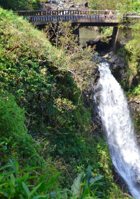 Waterfall vista stop on the Road to Hana