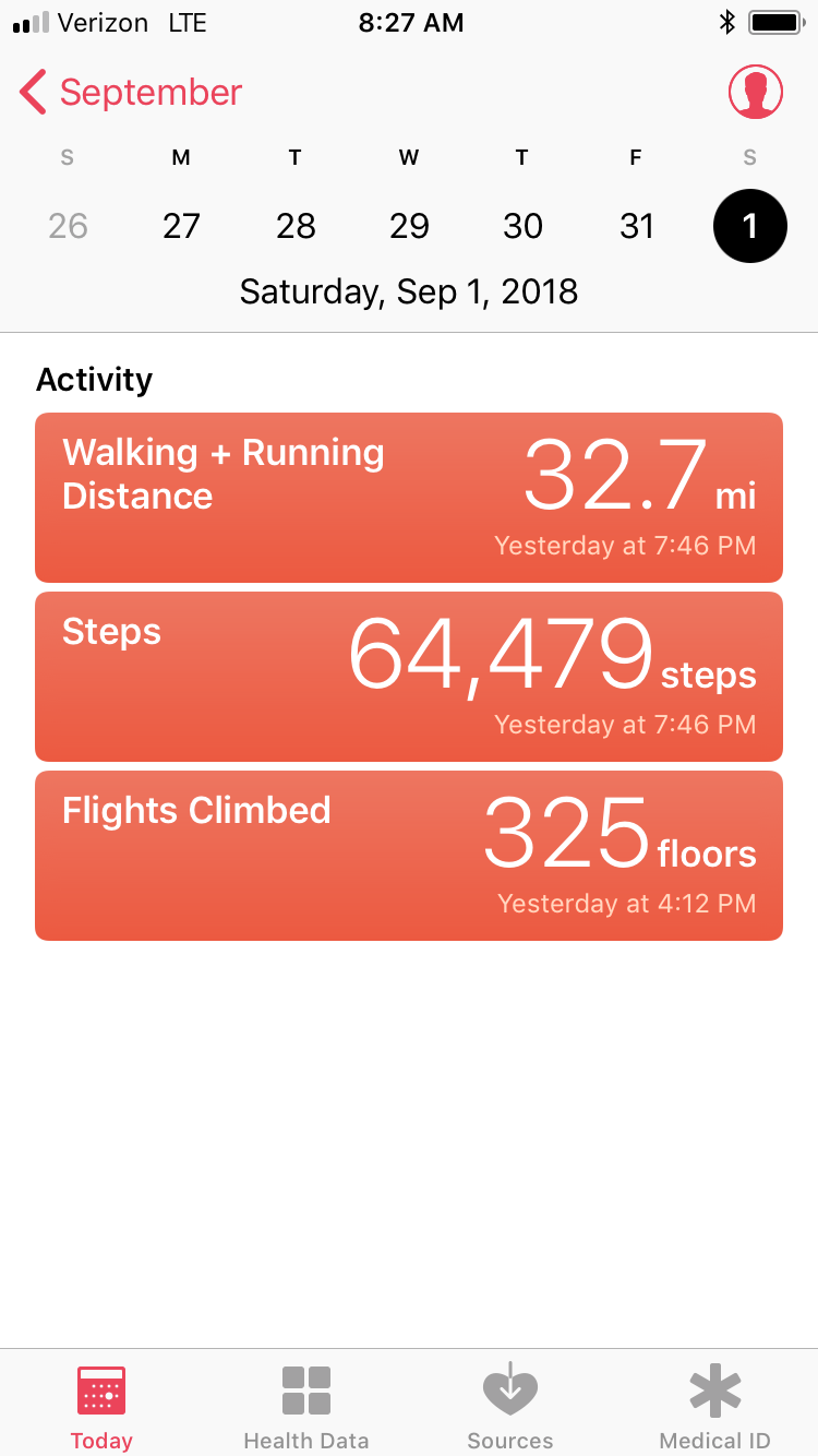 That was a lot of steps for the day!