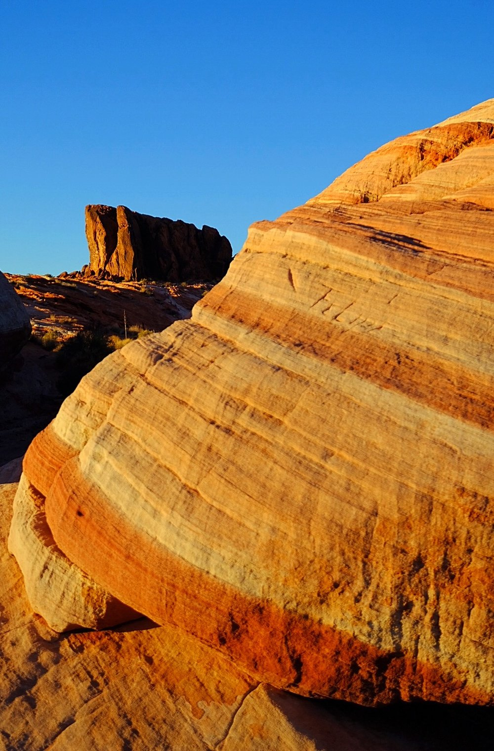 Fire Wave Trail: Valley of Fire State Park.