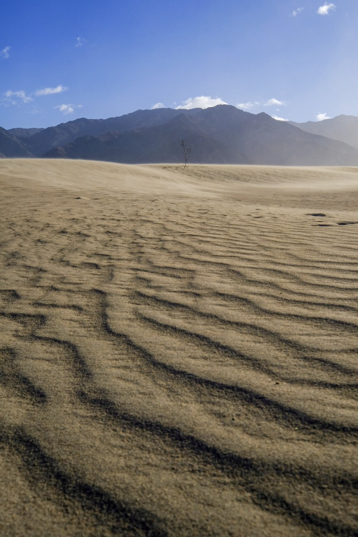 Mesquite Sand Dunes Death Valley.