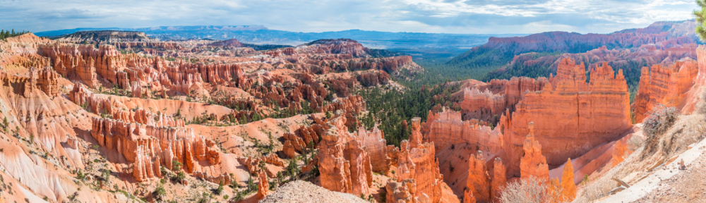 Peering out into Bryce Canyon from along the rim trail.