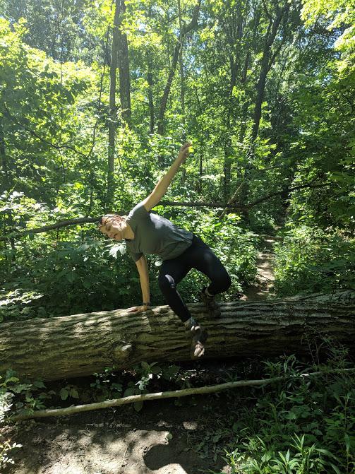 Scaling trees like a champ
