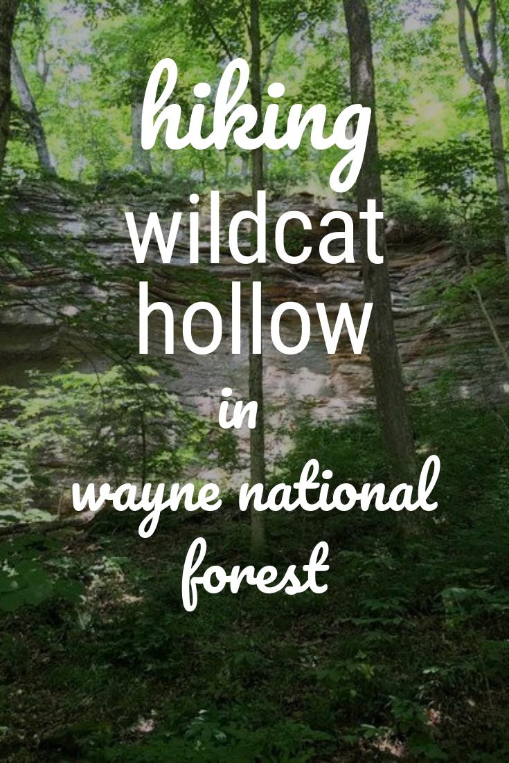 wildcat hollow.png