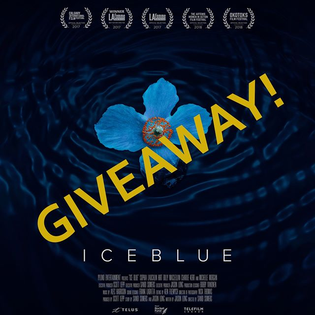 GIVEAWAY! Win 2 tickets to see ICE BLUE at one of the following Landmark Cinemas! **To enter, comment below with which cinema you'd like tickets to and tag a friend** Valid from Tuesday May 8 to Thursday May 10, 2018 at the following Landmark locations: Calgary Country Hills, Edmonton City Centre, Kelowna Grand 10,  Grant Park Winnipeg, Kanata and Whitby. Winner will be randomly selected and announced at 3pm (mountain time). Tickets will be emailed to the winner (winner gets to pick the date/time/location - subject to availability). . . . . . #icebluemovie @MichelleMorgan_ @SophiaHirt @billy_maclellan @Mattandsamsbrother @sandivva #freetickets #movies #cinema #landmarkcinemas #film No purchase necessary. Random draw. No Cash value.