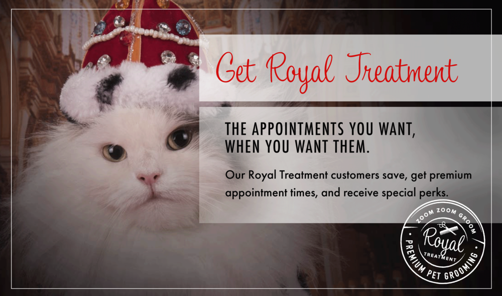 royal-treatment-cats.png