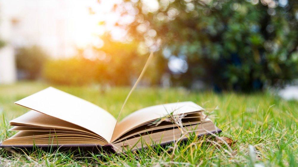 grass book.jpg