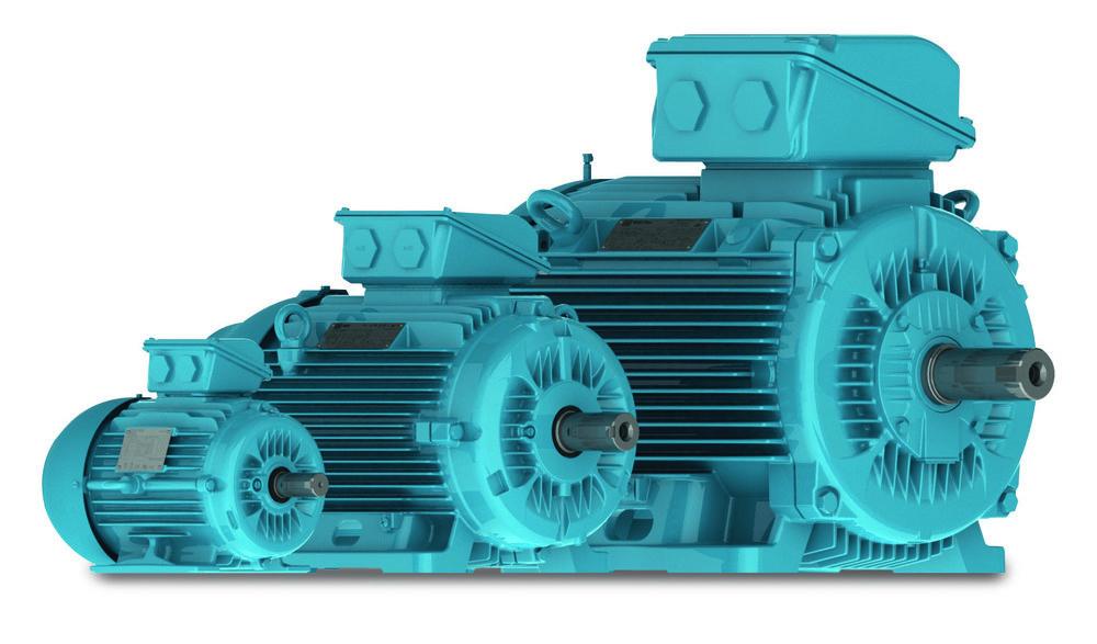 weg-w22-motor-4c.jpg