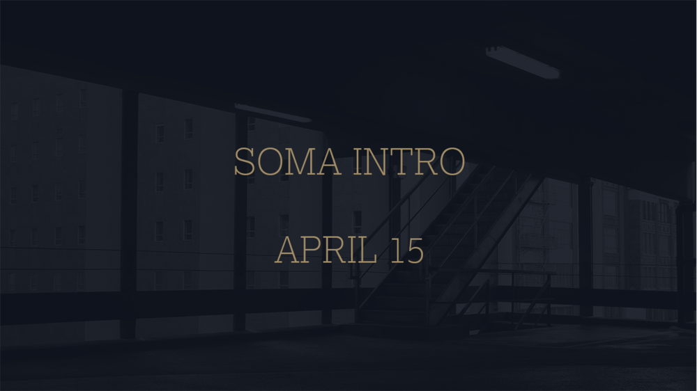 SOMA INTRO.png