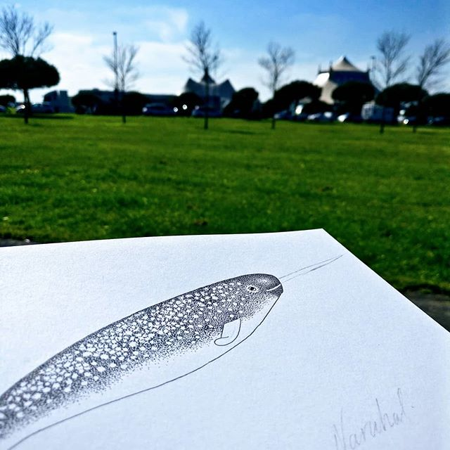 Finally the sun has come back! There was no way I was going to sit indoors all day, so I decided to take the work outside! Only for an hour but my goodness the sun makes you feel better doesn't it! ☀️ Also getting a sneak peek at a new pointillism Narwhal design! Do you like him so far? ✨