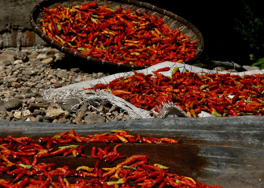 Things-Laos Peppers.jpg