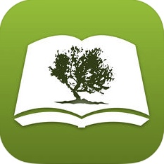 Olive Tree Bible.jpg