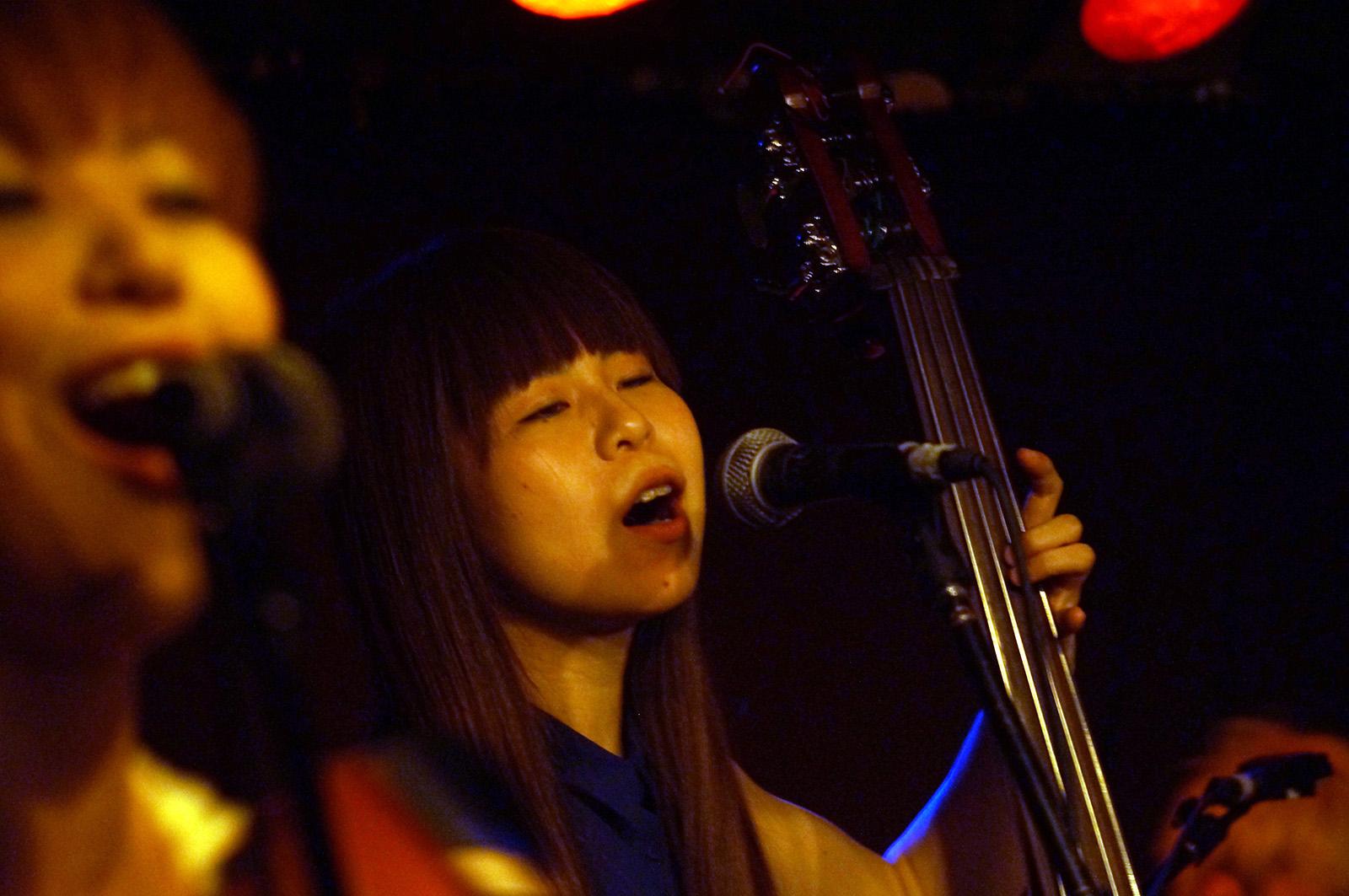 hayashi shiba