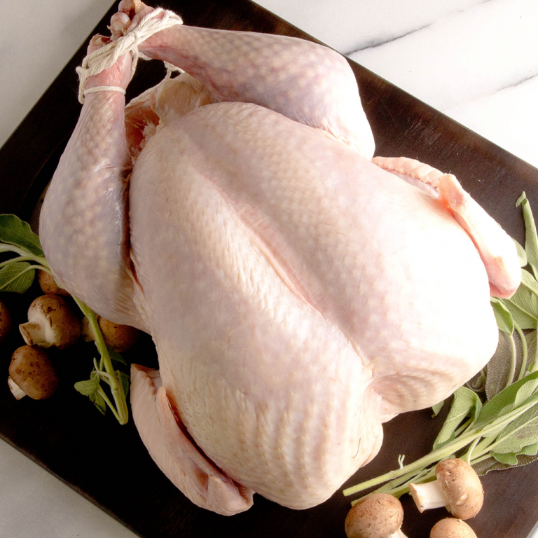 fresh_turkey_1024x1024.png