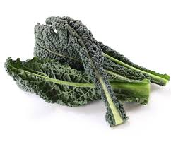 ORGANIC Lacinato kale $2.39/each - Locally grown!