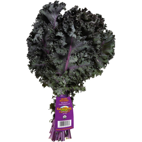 ORGANIC Red kale $1.89 - Locally grown!