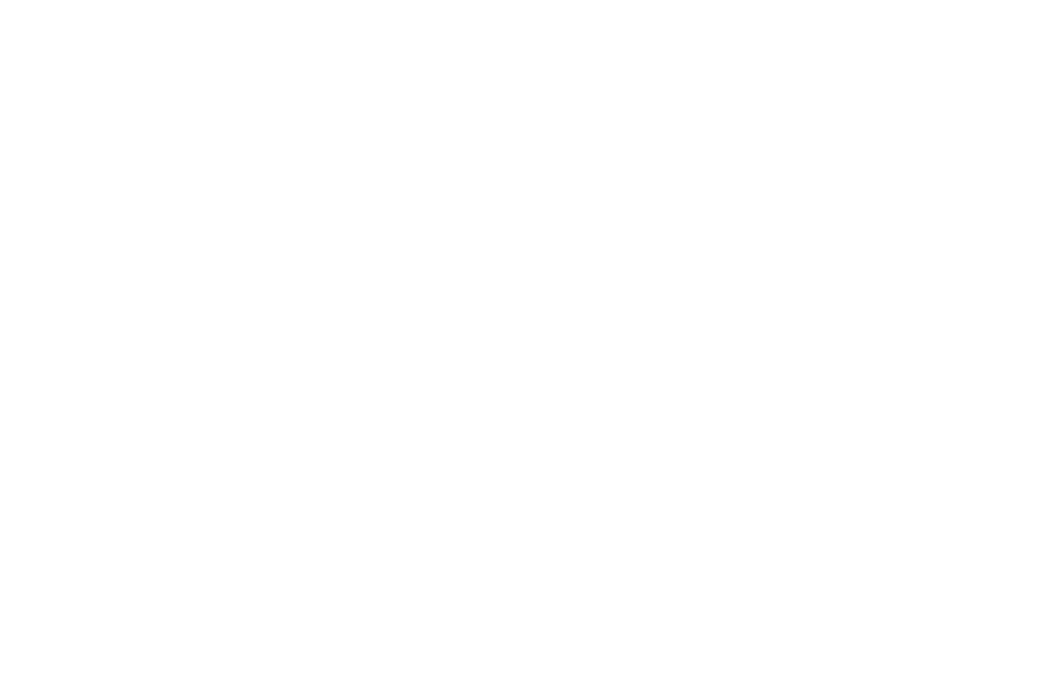 G-Force Capital