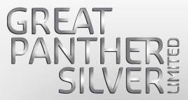 great_panther_silver_logo.jpg