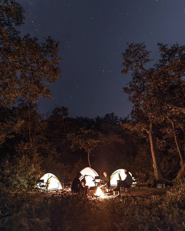 Night camping in the forests of Rajasthan.  Where? Ranakpur is a great base for exploring the hilly, densely forested Kumbhalgarh Wildlife Sanctuary that extends to some 600 sq km.  What to expect? Some Leopards and wolves.  And? Some Antelopes Gazelles, deer and possibly sloth bears.  Is it safe? Yes!! we are going to take all the safety measures and two guards guarding us all night.  Who can join? Everyone who wants a little adrenaline rush for a change instead of a lazy leisure holiday.  Join us for this adventurous and informative trip to Rajasthan on december.  For more details : Link in Bio/ DM!  In collaboration with @hostelavie.hostels And @ranakpuradventures !  Picture credits : @sayannath  #travelbugbytes #rajasthantrip #ranakpur #rajasthanadventure #camping #stargazing #wildlife #adventure #jaisalmertrip #desertsafari #kumbhalgarh