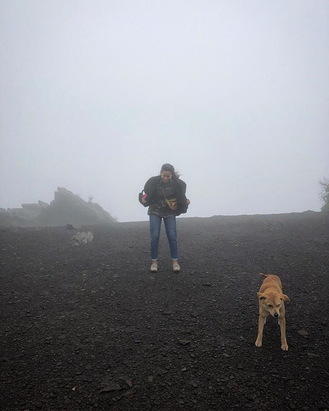 Hike to the tallest peak in Karnataka on a rainy day. @karnatakaworld  @mita.h.singh  #travelbugbytes . . P.C @_ambida  @cntravellerindia @tripotocommunity @incredibleindia @lonelyplanetindia @historytv18 @natgeoindia @natgeotravel @dametraveler  #India #TravelIndia #Travel #InstaTravel #Travelgram #GlobeTrotter #TravelBlog #TravelBlogger #TravelPhotography #Backpacker #Outdoor #Roam #TravelGuide #Traveller #ExploreIndia #Earth #GoodVibes #TourThePlanet #Wanderlust #Apple #ShotOniPhone #iPhonePhotography #CNTGiveItAShot #NatGeoYourShot #TripotoFeaturedTraveller