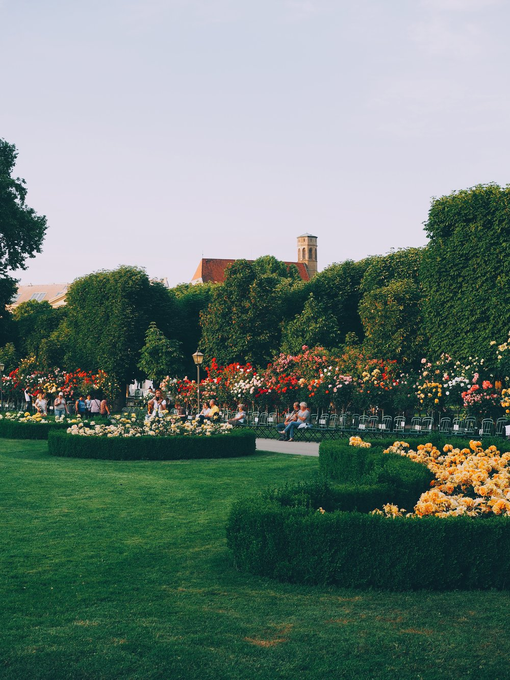 Rose garden in the Volksgarten