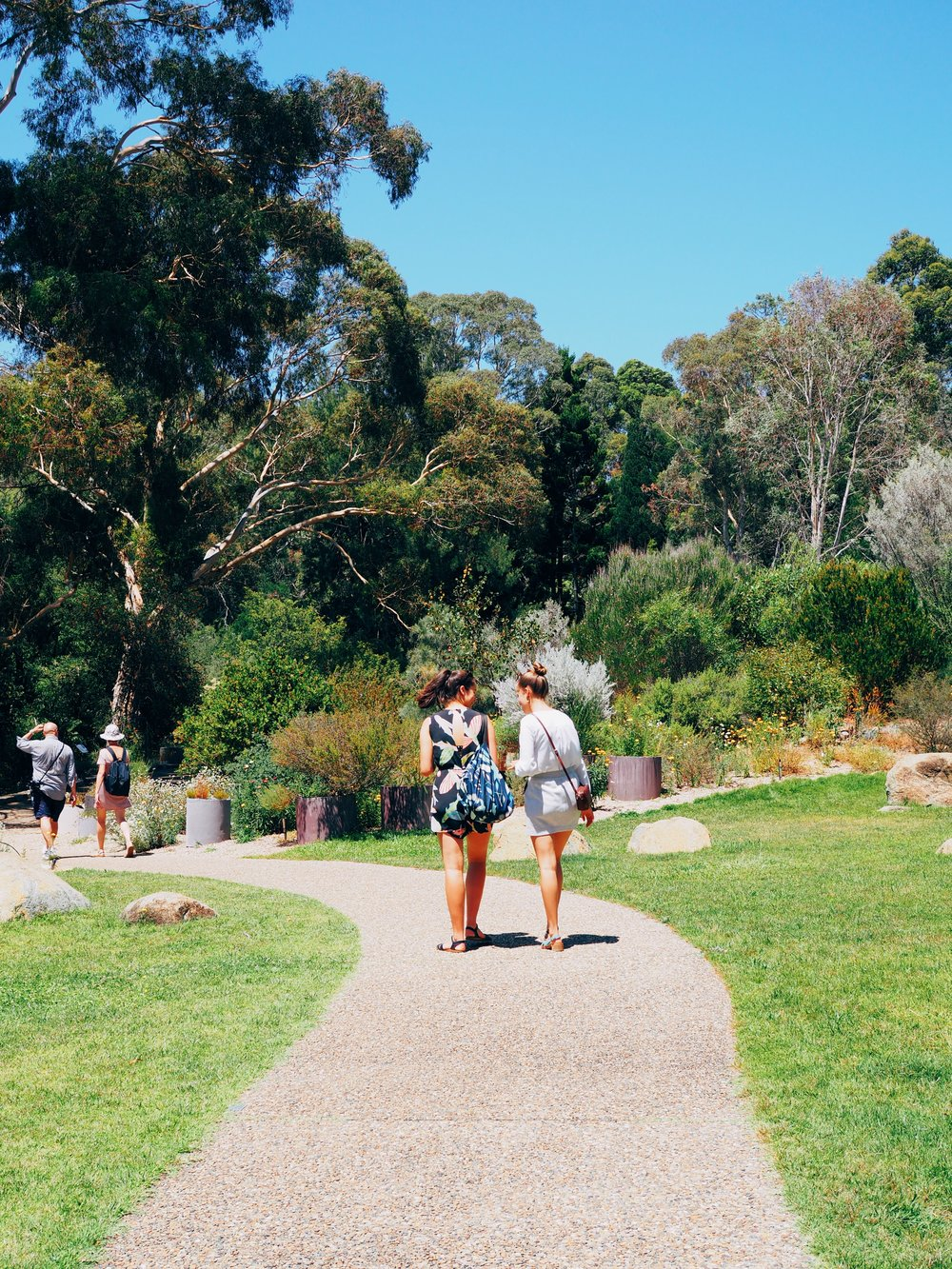 Walking around the Botanic Gardens