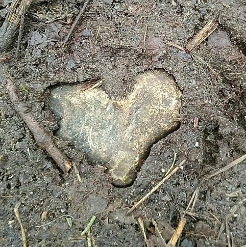 Muddy stone heart